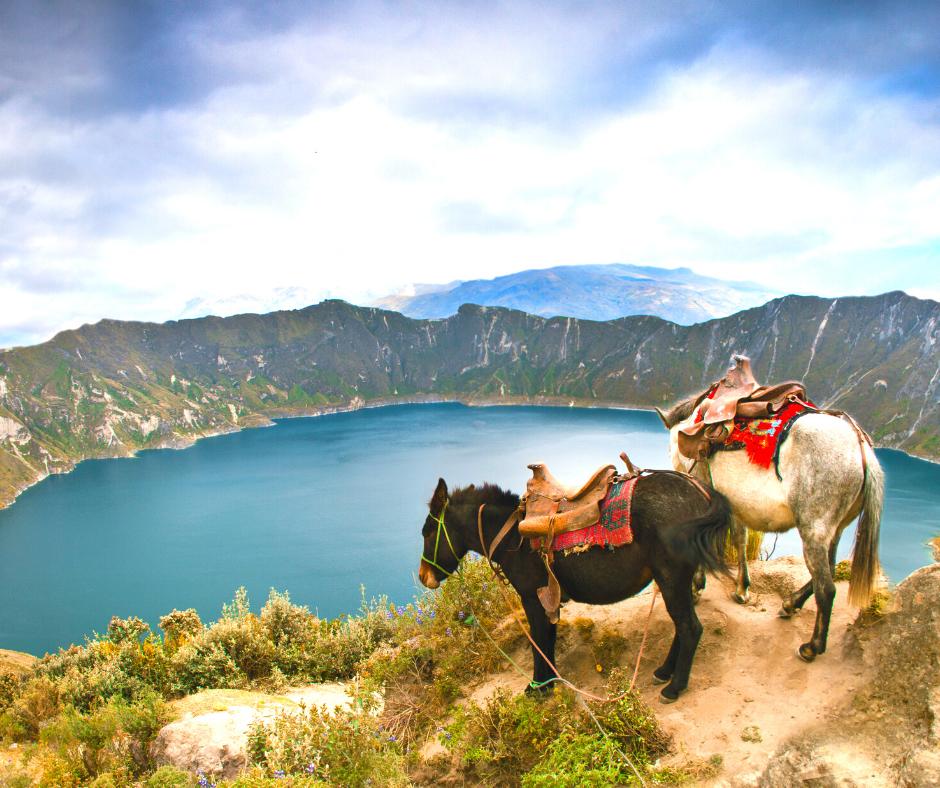 Ecuador Tour Packages