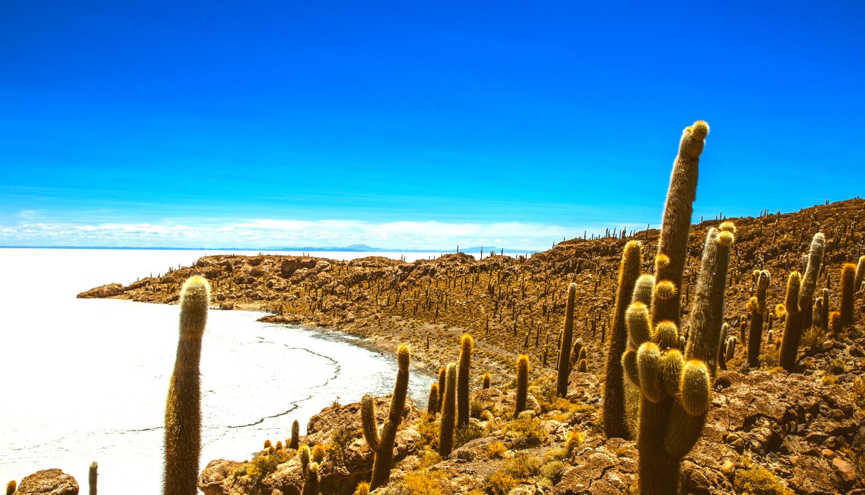 Premium Tour of Bolivia